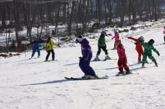 Приморцы отпразднуют Всероссийский день зимних видов спорта