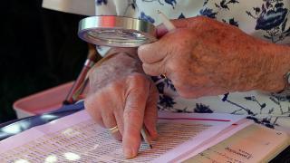 Фото: pixabay.com | Названы ошибки в трудовой книжке, за которые могут снизить пенсию