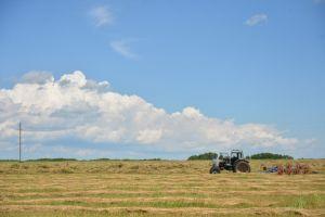Стала известна главная проблема сельского хозяйства в Приморье