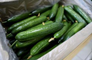 Фото: Александр Сафронов (правительство Приморского края)   Китай продолжает кормить Приморье овощами