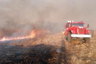За прошедшие сутки огнеборцы Приморья более 20 раз выезжали на ликвидацию палов
