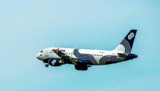 Приморец, которого обвинили в экстренной посадке самолета, заплатит штраф