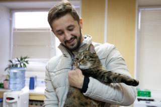 Фото: Татьяна Меель / PRIMPRESS   Кота Виктора из Владивостока ждет «Кэтсбург» и встреча с крупным чиновником