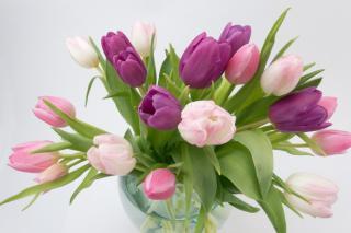 Фото: pixabay.com | Как продлить жизнь букету цветов?