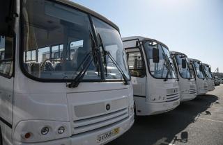 Сразу несколько автобусных рейсов отменили во Владивостоке