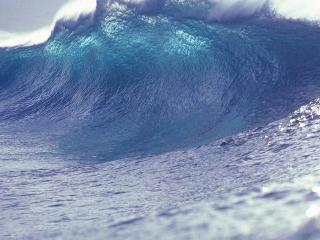 В Сети прогремело видео мощного цунами во Владивостоке