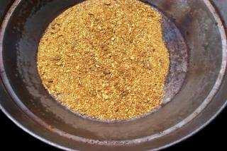 В Приморье приступили к поискам месторождений золота