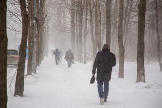 Фото: Татьяна Меель / PRIMPRESS   Борис Кубай назвал время основного удара снежной стихии по Приморью