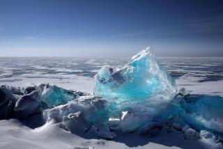 Фото: pixabay.com | «Мне аж плохо стало»: жестокое убийство на льду потрясло Владивосток