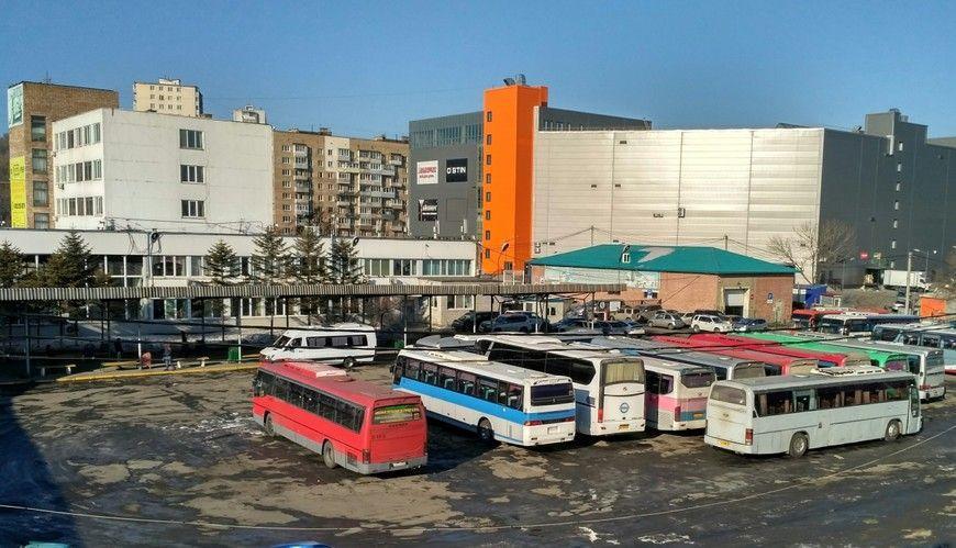 Правительство подготовило сюрприз пассажирам междугородних автобусов