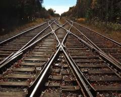 Труп с отрезанной головой обнаружен на железнодорожных путях у станции Ружино