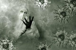Фото: pixabay.com   Тест PRIMPRESS: Кто ты во время пандемии коронавируса?