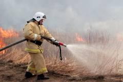 На выходных в Приморье потушили лесной пожар