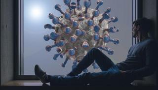 Фото: pixabay.com   Коронавирус легко убить. Средство есть в каждом доме