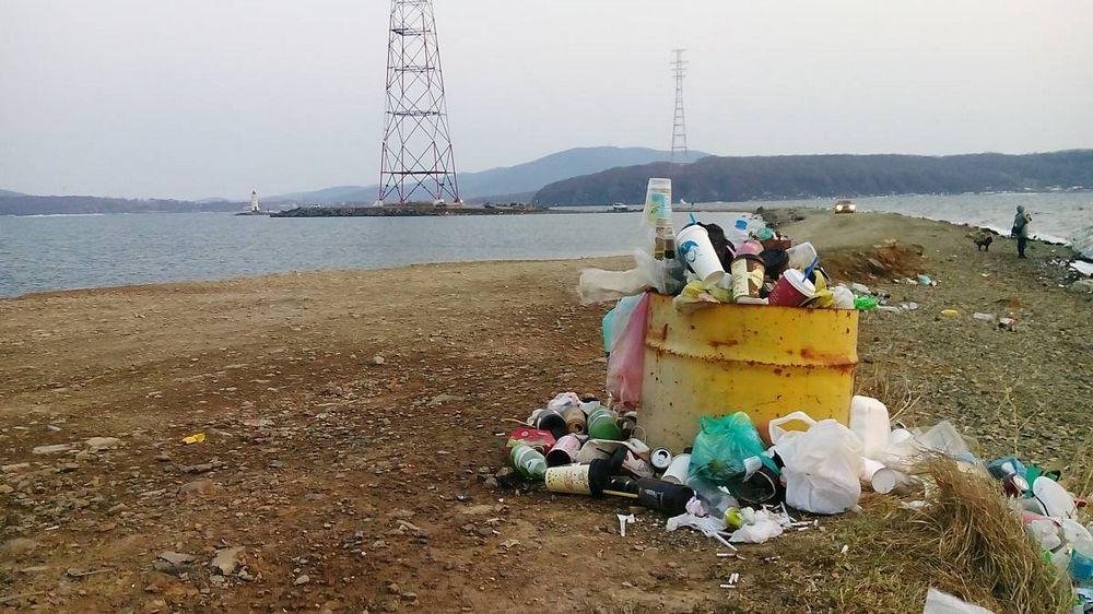 Кошка Токаревского утопает в мусоре