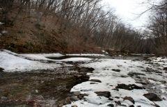 На реках Приморья ожидается подъем уровня воды