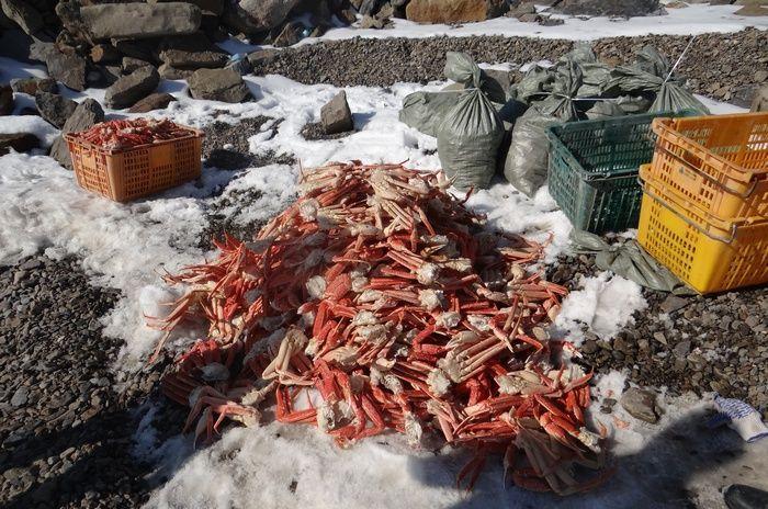 Неприятный сюрприз подготовил Минсельхоз экспортерам рыбной продукции