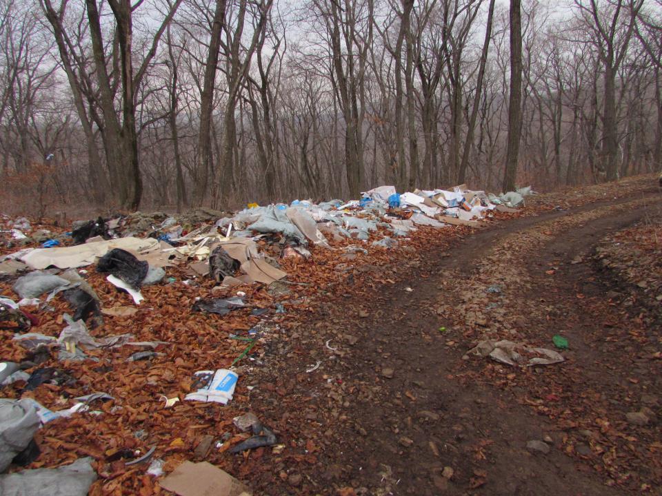 Лес в пригороде Владивостока постепенно превращается в мусорный полигон