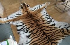 Четырех приморцев будут судить за попытку продать шкуру тигра