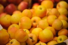 Фото: Илья Евстигнеев   Около 100 кг санкционных яблок уничтожено в Приморье