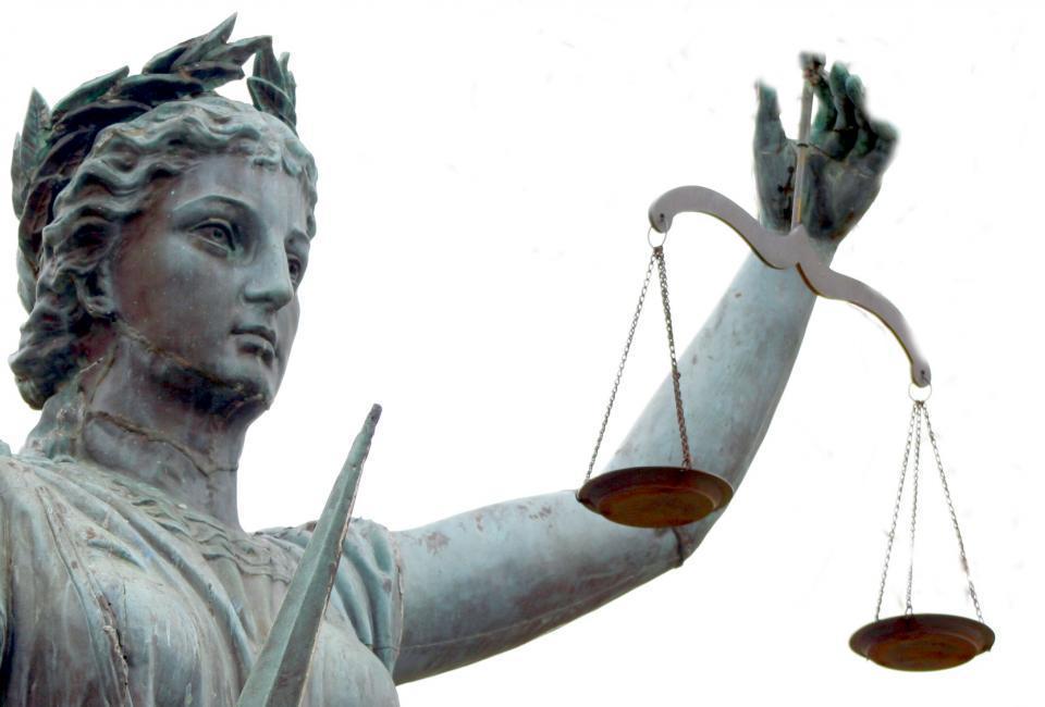 Приморец предстанет перед судом за незаконную вырубку деревьев
