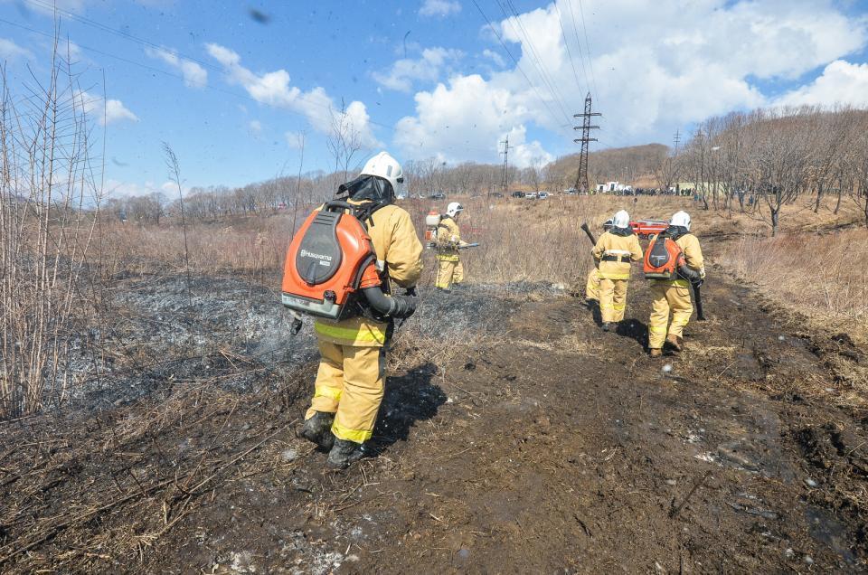 5 лесных пожаров локализовали засутки вПриморье