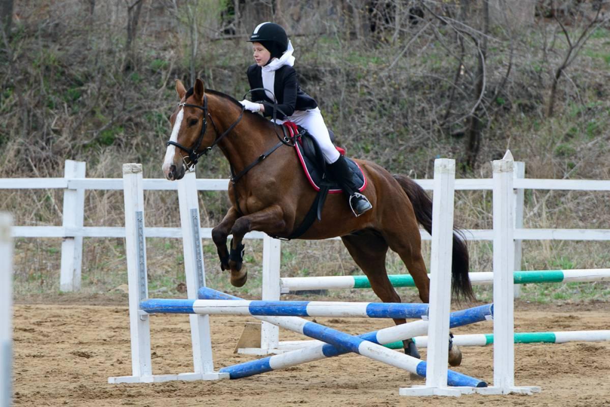 Во Владивостоке прошли соревнования по конному спорту