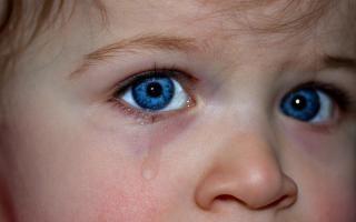 Фото: pixabay.com | Дети под колесами: за сутки во Владивостоке трое несовершеннолетних пострадали в ДТП