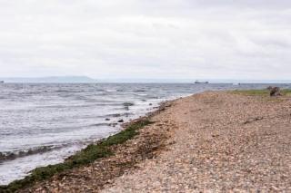 Фото: PRIMPRESS | Труп, связанный веревкой, вынесло на берег пляжа во Владивостоке