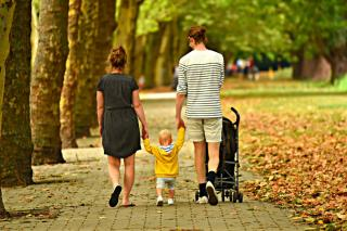 Фото: pixabay.com | «Уж извините»: популярное место отдыха станет платным в Приморье