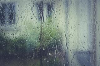 Фото: pixabay.com   Приморцев предупредили о сильном ветре и дождях
