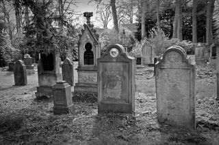 Фото: pixabay.com | «И это перед родительским днем»: приморца возмутило увиденное на кладбище