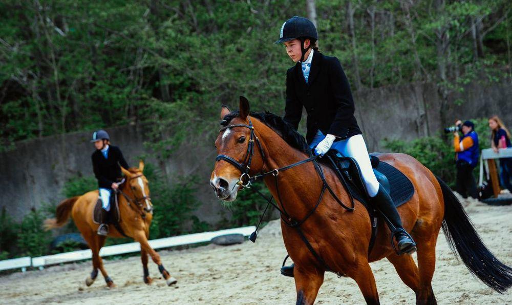 В открытом кубке по конному спорту победили дамы