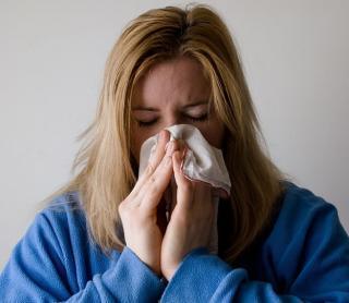 Фото: pixabay.com | Как выжить в сезон аллергии: пять необычных способов
