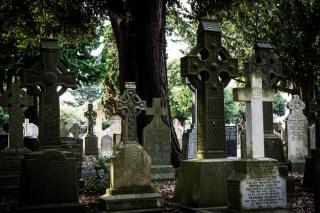 Фото: pixabay.com   Жителей края возмутило, что нашли на могилках маленьких детей в Приморье