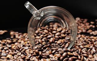 Фото: pixabay.com   Кофе может стать дефицитным продуктом