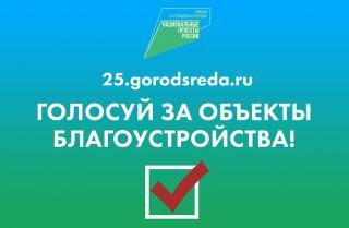 Фото: primorsky.ru | В Приморье продолжается голосование за выбор объектов благоустройства