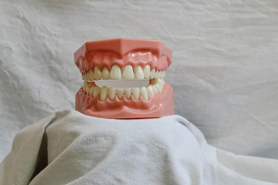 Приморцы назвали верный способ, как избавиться от звонков стоматологии
