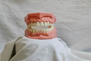 Фото: pixabay.com | Приморцы назвали верный способ, как избавиться от звонков стоматологии
