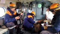 Житель Владивостока попал под лавину вместе со швейцарцем