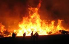 В Приморье сгорел деревоперерабатывающий цех