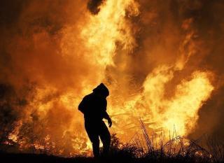 Фото: pixabay.com   «Все могло взорваться»: приморцы чудом спаслись в бушующем пожаре