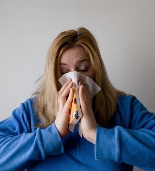 Фото: pixabay.com | Эксперт рассказал, как не перепутать коронавирус с сезонной аллергией