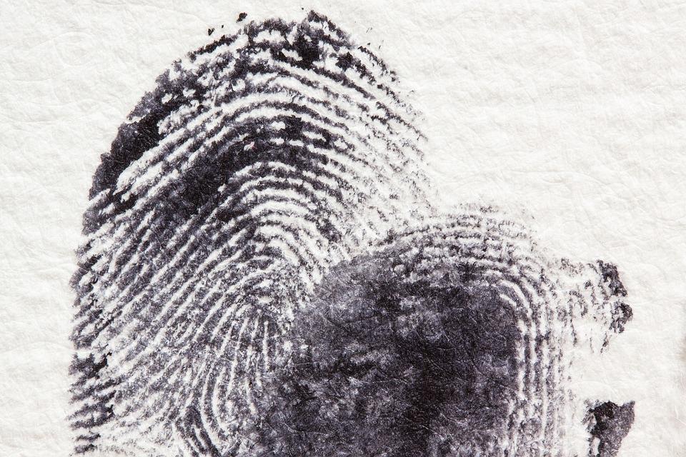 Отпечатки пальцев выдали преступника в Приморье