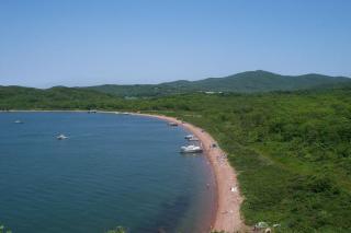 Фото: Wikipedia/Straitgate | Такого еще не было: много нетипичных трупов нашли в море около острова Русского