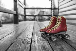 Фото: pixabay.com | В МВД раскрыли, чью ногу нашли под крыльцом частного дома в Приморье