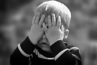 Фото: pixabay.com   «Мальчик умолял»: дикая история с нападением животного произошла в Приморье