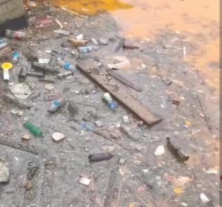 Фото: скрин из @vdk_news24   «Гибнет все живое»: жители Владивостока заметили горы мусора в море
