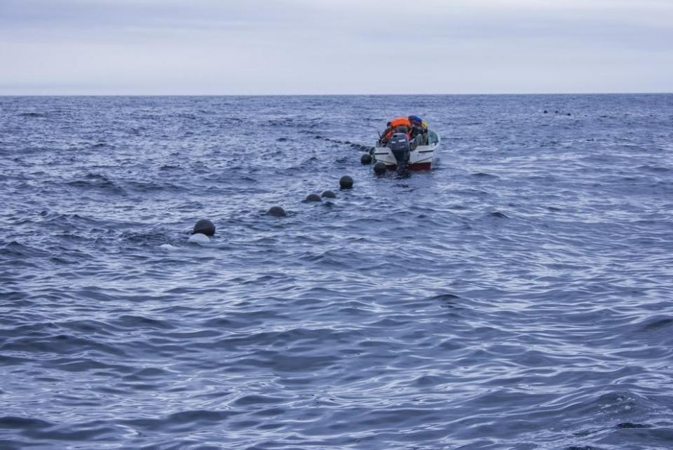 В Приморье ищут пропавшего водолаза