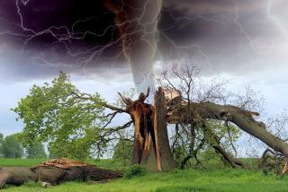 Фото: pixabay.com   Сразу пять опасных погодных явлений обрушатся на Приморье 31 мая